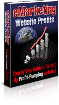 Product picture Step By Step Guide To Setting Up Profit Pumping Websites