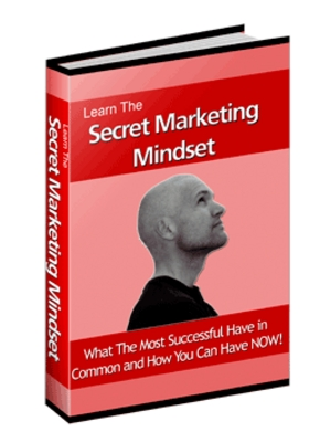 Product picture The Millionaire Internet Marketing Mind with MRR